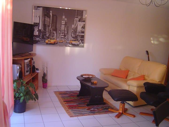 BLAGNAC Chambre avec balcon dans villa securisée