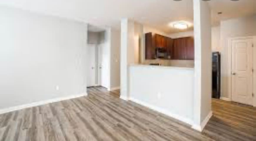 CLEAN LUXURIOUS 1 BED APARTMENT!