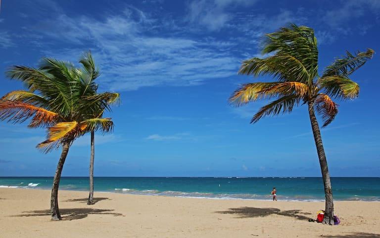 Close to the beach/New AC/WiFi/Airport Transport - San Juan - Apartment