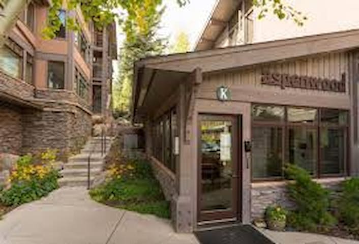 Ski in/out Condo @ the Aspenwood - snowmass village