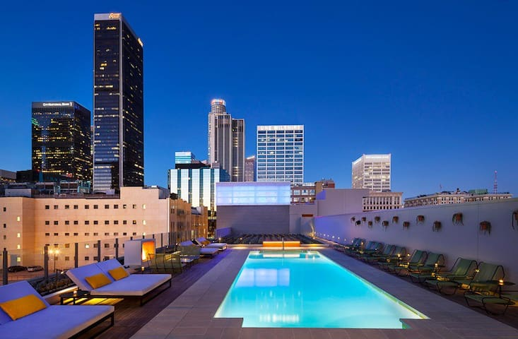 Cool Mid Century Modern Luxury Condo BEST of DTLA
