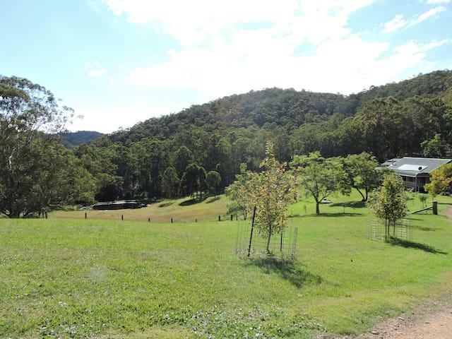 Misty Mountain - Stroud NSW- Pet Friendly
