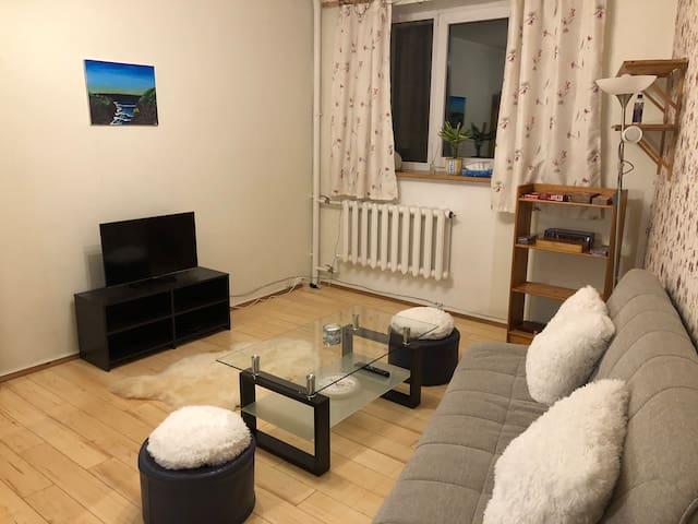 Quiet apartment in the city center with sauna