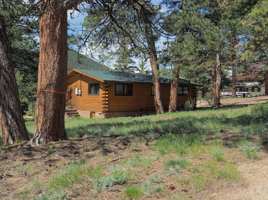 Rocky Mountain High Cabin - Drive to the side of the cabin and relax, unwind and relish the rockies!