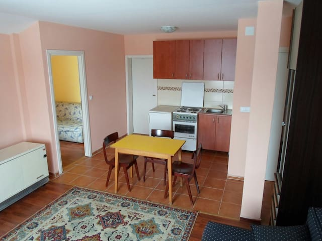 Apartment  for 1-3 persons,free wifi,free parking
