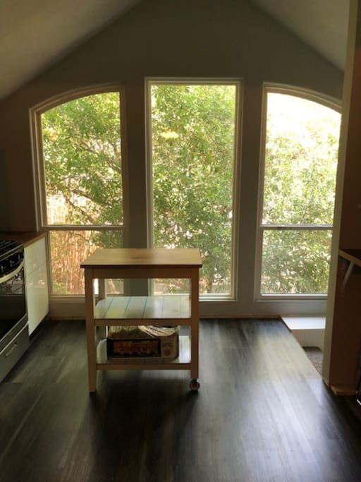 Beautiful tree lined view off of kitchen
