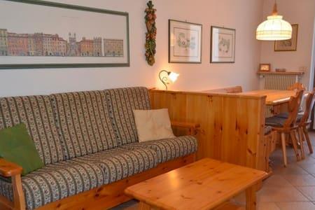 apartment for 3 persons near Fiera di Primiero - Cicona