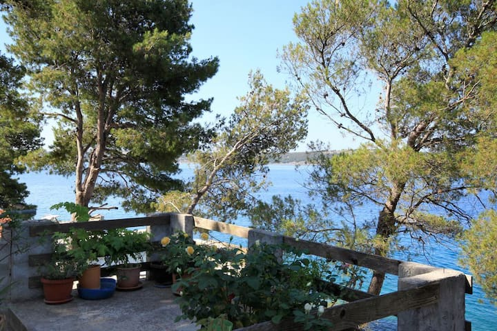 Two bedroom apartment near beach Lavdara (Dugi otok) (A-433-a)