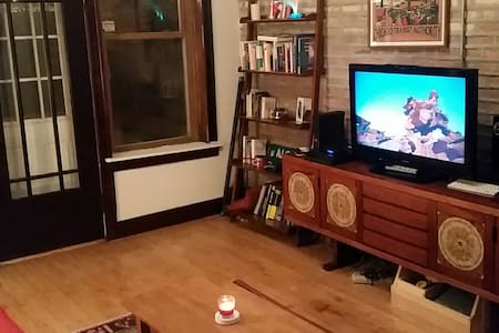 Beautiful clean home & Super-duper-cool Resident! - Chicago - Apartment