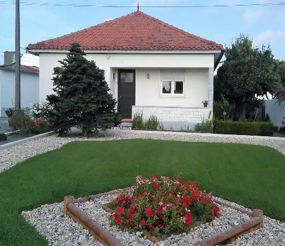 Vivenda no centro de Vieira de Leiria - Vieira de Leiria - Casa