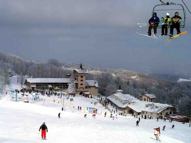 Cozy Beech Mountain Ski Suite