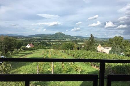 Ágnes apples: Kisapáti Cottage with View