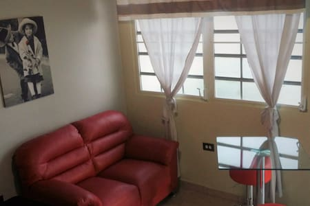 Comfortable Friendly Apartment II