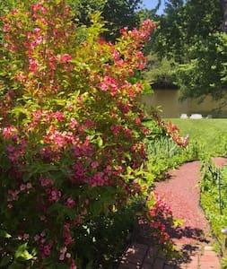 Creekside Cottage - Saugerties - Haus
