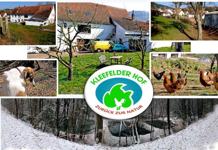 das Windrad freie Königsland - Hinzweiler - Haus