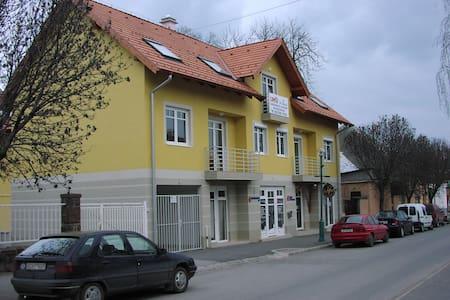 Cosy apartment in the center of Balatonalmádi - Balatonalmádi