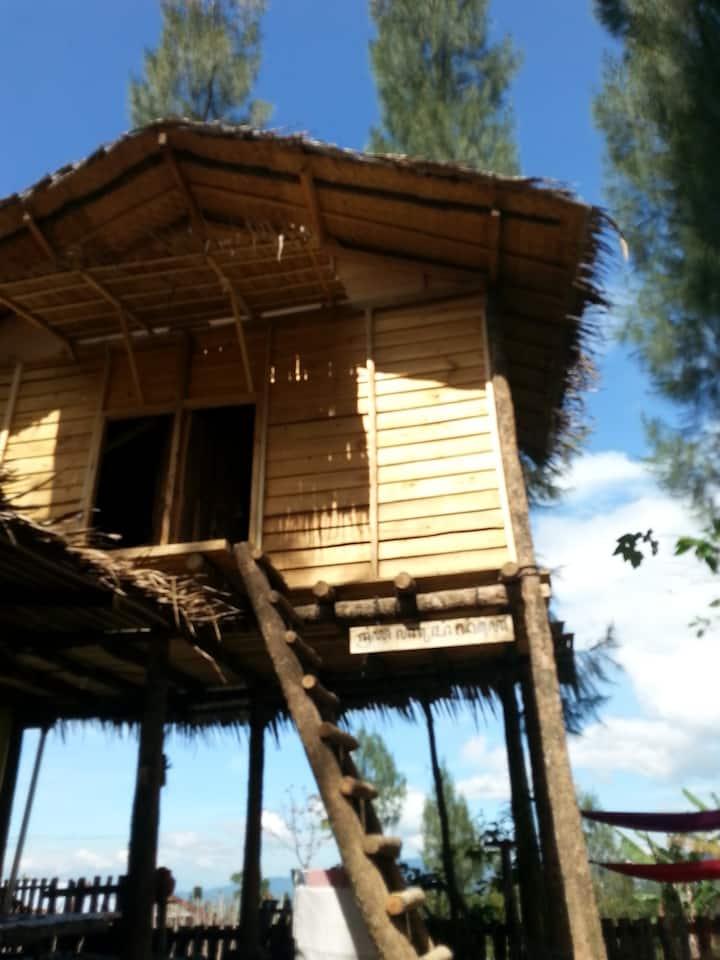 Harumi Dieng Tree House