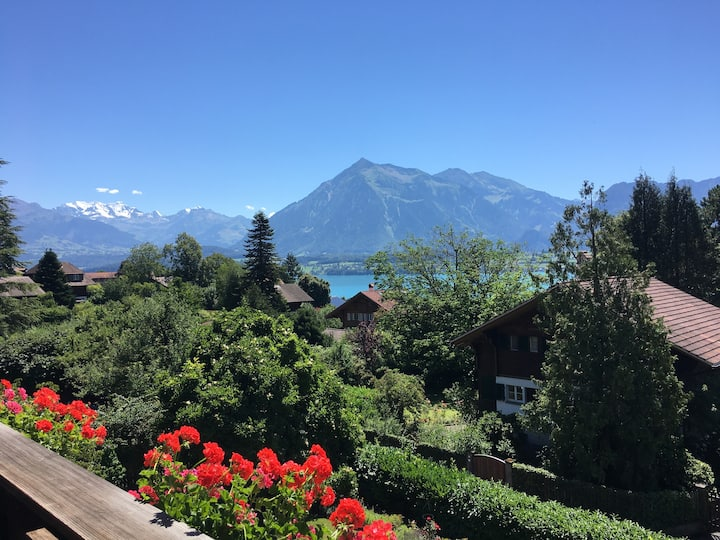 Appartement mit Berg- und Seesicht