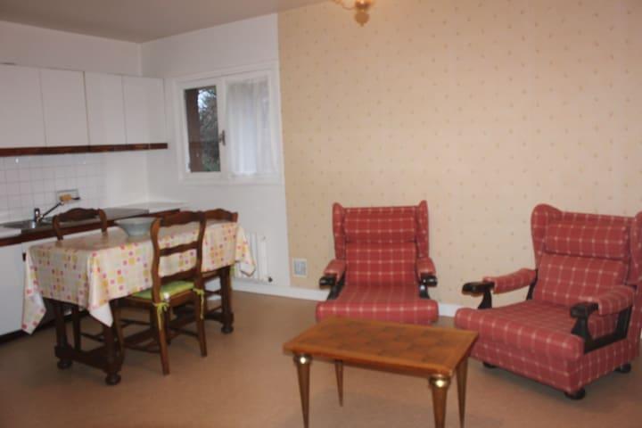 Appartement avec jardin et terrasse - Châtel-Guyon - Apartamento