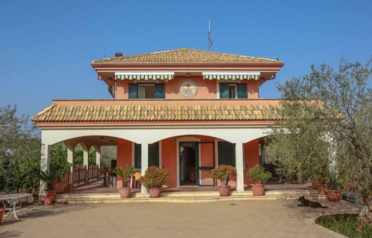 Villa immersa negli ulivi