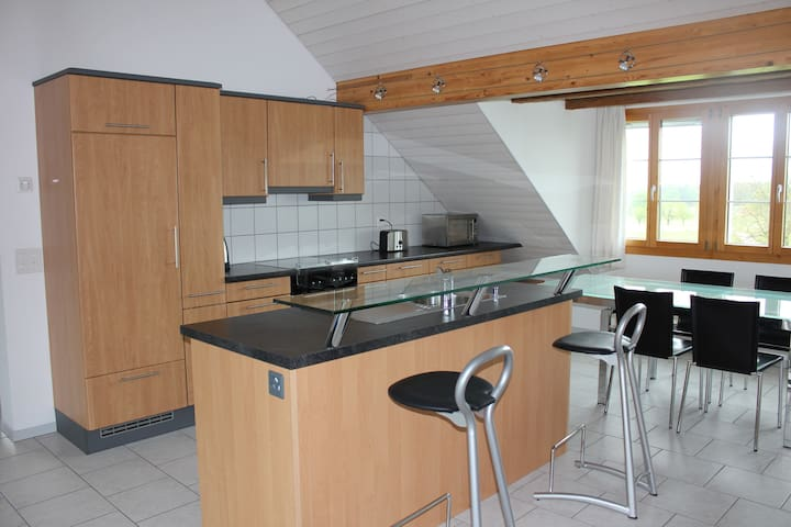 Family-friendly 4-room apartment - Luzern - Appartement