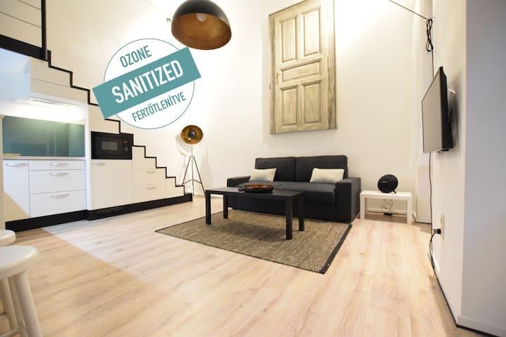 Standard Apartment by Hi5 - Oktogon& Nyugati (084)