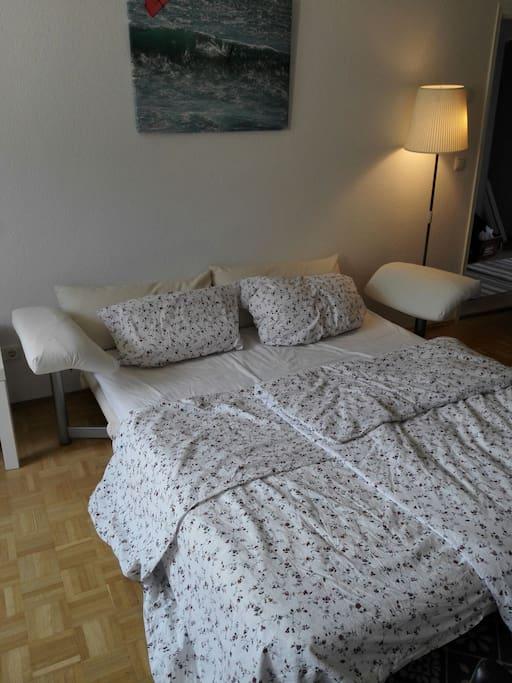 Ligne roset sleeping sofa