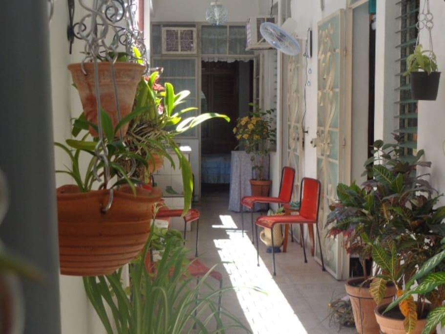 Otra vista del corredor mostrando su amplitud y confort.