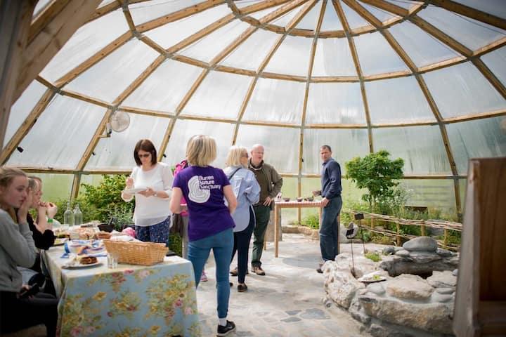 Meet at the Burren Botany Bubble