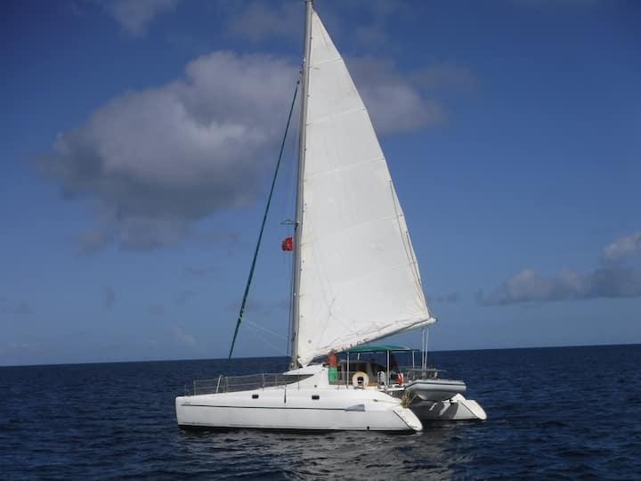 catamaran de vacances insolites