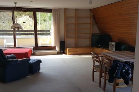Quiet, 100m2, 2 floors, 2 balc., u-bahn & parking