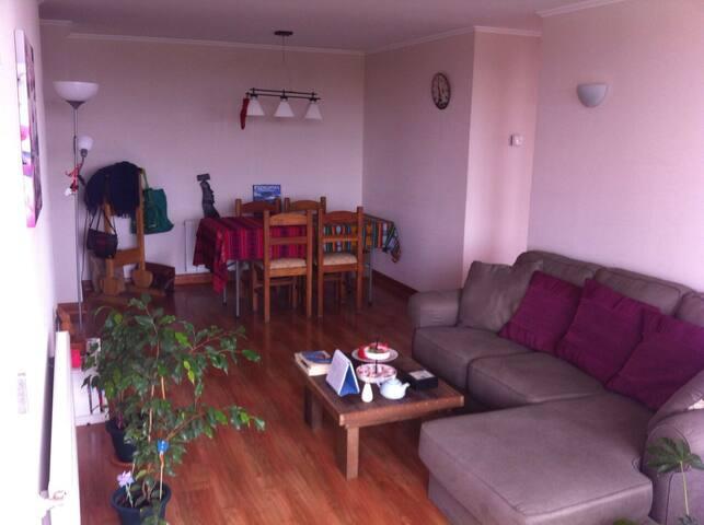 La mejor ubicación en Temuco - Temuco - Apartment