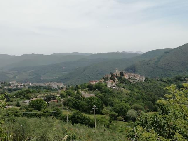 Vista del paese immerso nel verde della Valnerina.