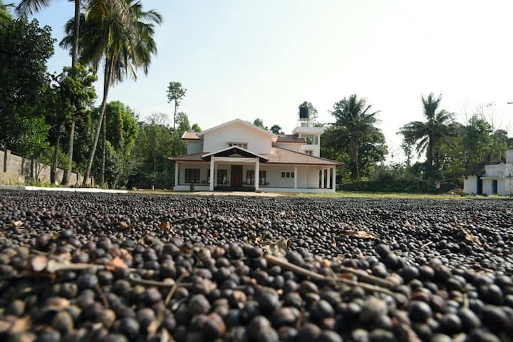 The Plantation Bungalow Homestay