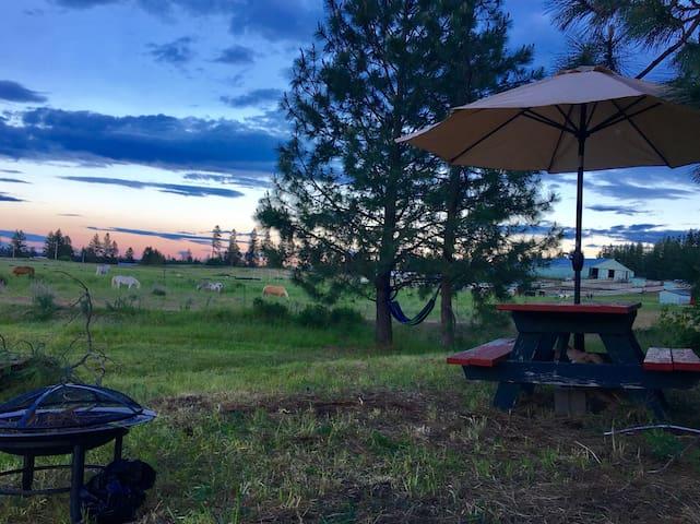 Authentic Barn Campsite #3 hasCozy Hammock & Views
