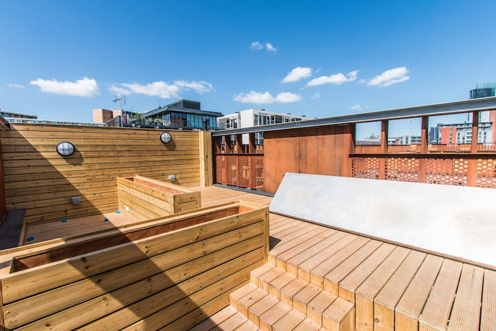 Entire city centre apartment with roof top