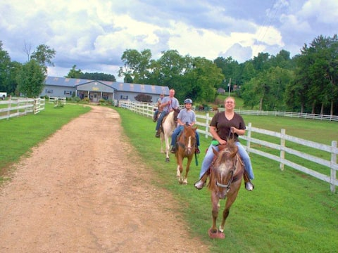 Love horses, love country, here's your place