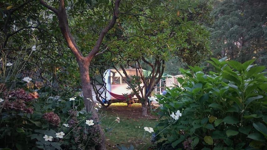"""Bessie"" the 1959 Vintage Caravan. - Mount Dandenong - Camper/RV"