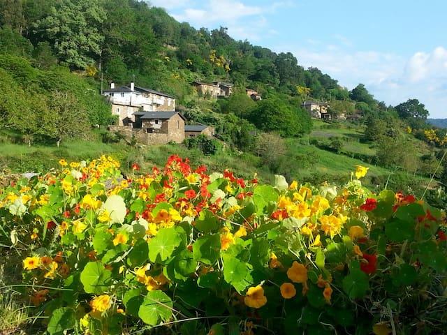 casa de piedra en un entorno rural - Lugo