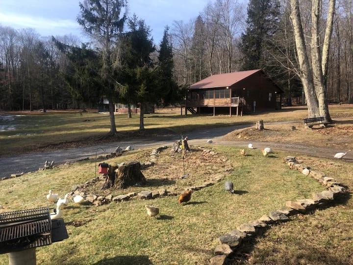 Cozy Cabin in 125 acre  Mountain Sanctuary w/pond