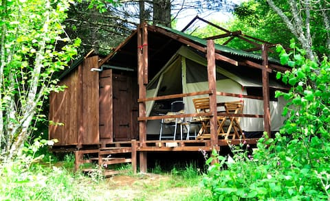 Forest Glamp on Guillerin Cavaran and Glamping
