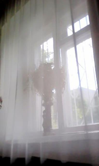 Красивый вид из окна с кровати.