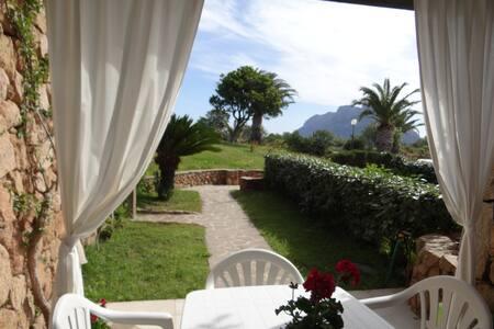 Mare e relax: Vacanza ideale al Villaggio I Fari!