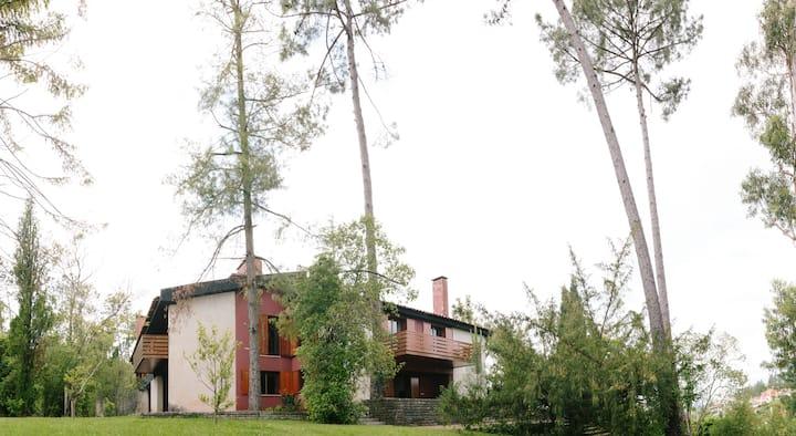 Casa modernista perto de Aveiro