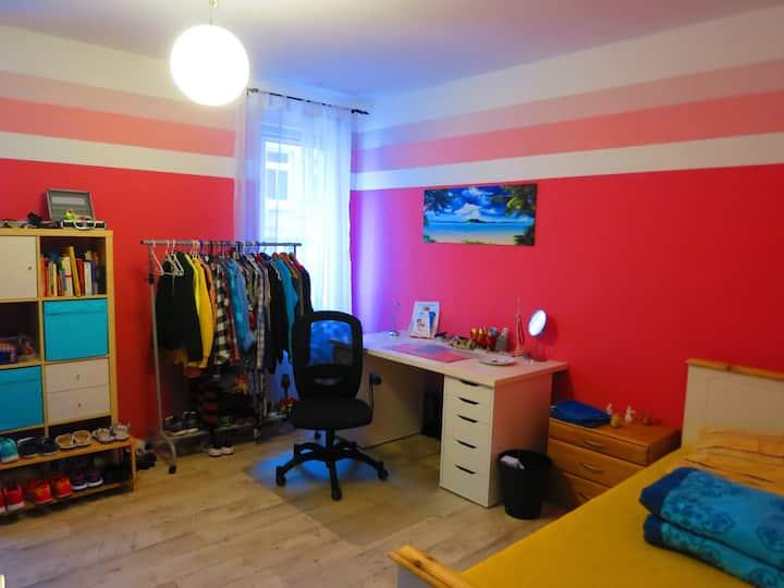 Helles 16 qm-Zimmer am Westbahnhof Nähe Stadtmitte