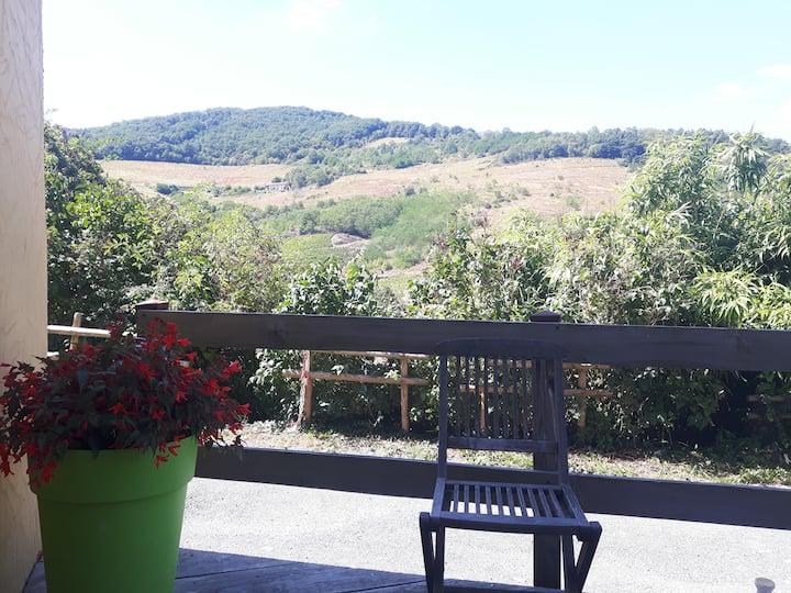 maison independante entre vignes et Forêts...