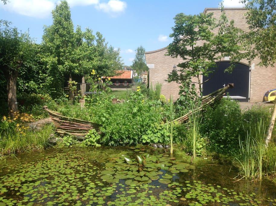 achtertuin met natuurlijke poel en div zonneterrasjes
