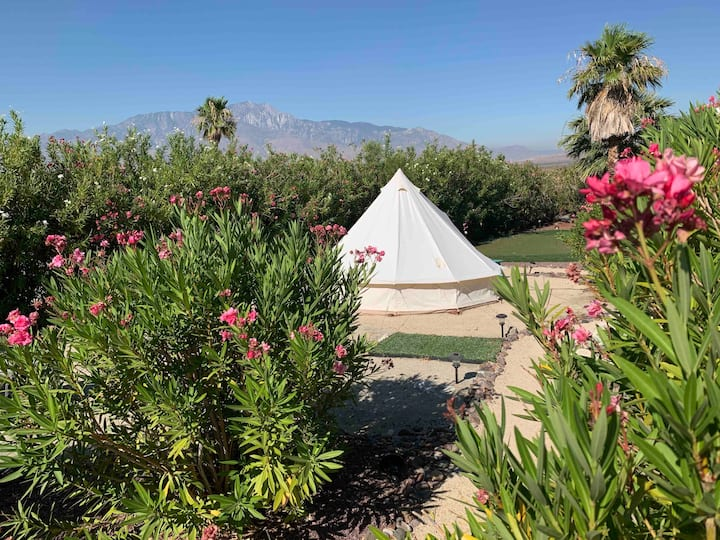 Distanced Glamping with Amazing Views, Amenities