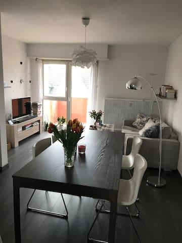 Private & modern Room near Basel, 3 mins to all!