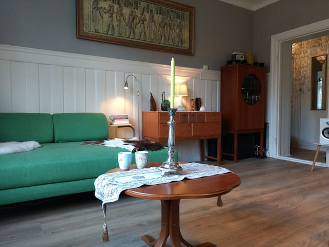 Beautiful old town apartment in Hamar city